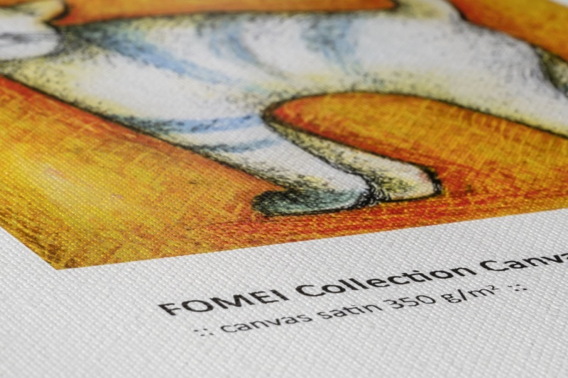 FOMEI Collection Canvas Satin 350 II - Detail