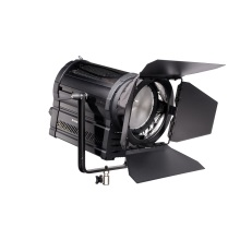 FOMEI LED DMX-480F Fresnell