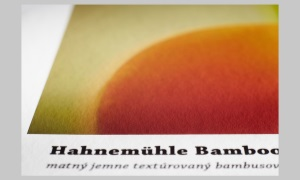 Hahnemühle Bamboo 290